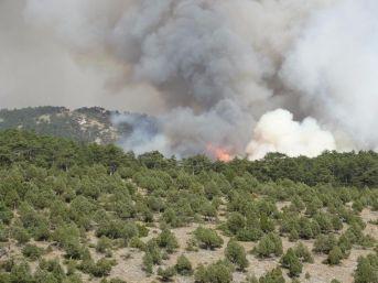 Kütahya'da Orman Yangını Söndürülemiyor