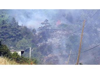 Alevler Köye Sıçradı