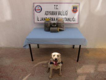 Jandarma Uyuşturucu Madde Ele Geçirdi