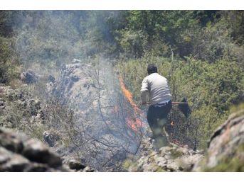 Posof'ta Yangın