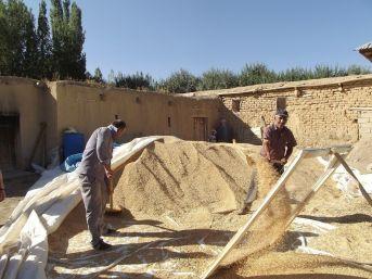 Oda Başkanı Aşkan'dan Çiftçilere Ziyaret