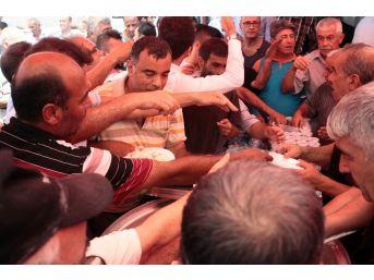 Adana'da Tavuklu Pilav İzdihamı