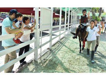 Buca'da Engelli Çocuklara Atla Terapi