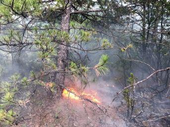 Yıldırım Sonucu 10 Ayrı Orman Yanıgını Çıktı