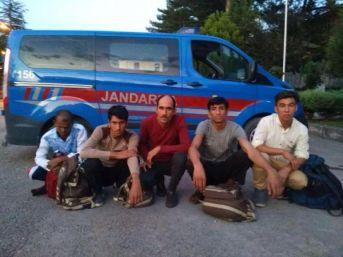Yolcu Otobüsünde 5 Kaçak Göçmen Yakalandı