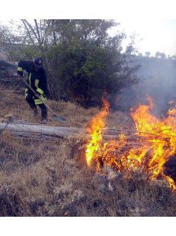 Anız Yangını Arı Kovanlarını Kül Etti