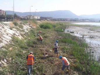 Beyşehir Gölü Kıyıları Ve Bsa Kanalında Temizlik Mesaisi
