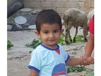 Küçük Hamza'dan İlk Yaşam Tepkisi Umutlandırdı