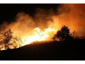Samsun'da Korkutan Anız Yangını