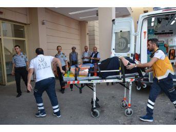Şanlıurfa'da Minibüs Devrildi: 5 Yaralı