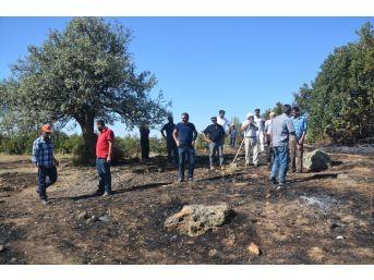 Sivas'ta Ormanlık Alanda Yangın