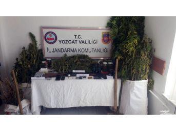 Yozgat'ta Uyuşturucu Operasyonda 3 Kişi Tutuklandı