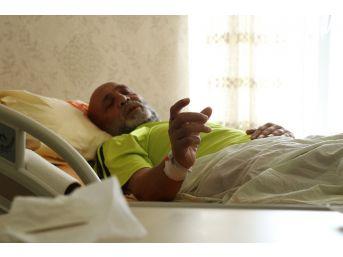 (özel Haber) Kanser Şüphesi İle Gitti Bağırsaklarından Kürdan Çıktı