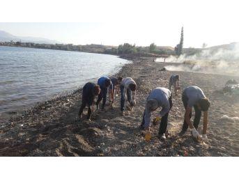 Van Gölü'nün Sahilinde Çevre Temizliği Yapıldı
