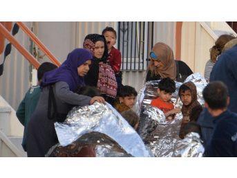 Dikili'de 113 Kaçak Yakalandı