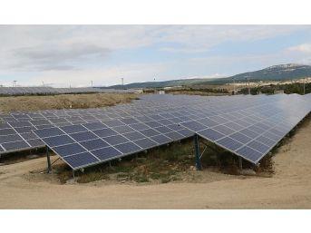 Yurt İzni Alamayınca Güneş Enerji Tarlası Kursu