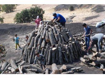 Mangal Kömürü Işçilerinin Ekmek Mücadelesi