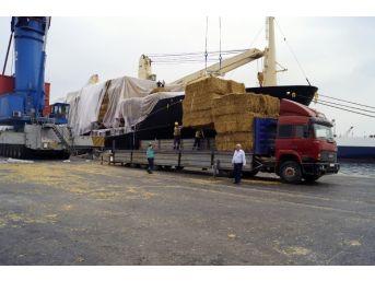 9 Bin Ton Saman İthalatı Başladı, İlk Ürünler İzmir'e Geldi