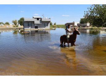 Suruç'ta Taban Suyu Tedirginliği Sürüyor