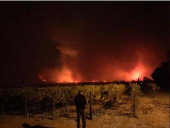 Kaliforniya Yangınında Ölü Sayısı 40'A Yükseldi, Yüzlerce Insan Kayıp