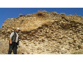 Koyun Otlatırken Şapel Bulan Çoban 2 Bin Yıllık Tarihi Kurtardı