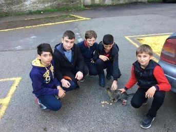 Öğrenciler Harçlıklarıyla Sokak Hayvanlarını Besledi