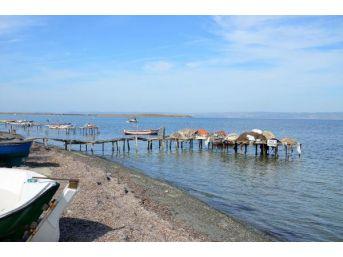 Çanakkale'de Balıkçılar Sahilde Erkek Cesedi Buldu