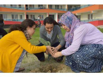 Öğrencilerden Cumhuriyetin 94. Yıl Dönümü İçin 94 Fidan