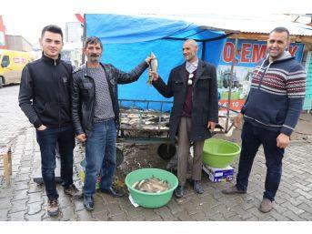 Varto'da Balık Sezonu Açıldı