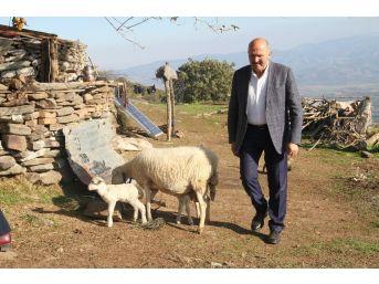 Başkan Ertürk, Çobanları 1300 Rakımda Ziyaret Etti
