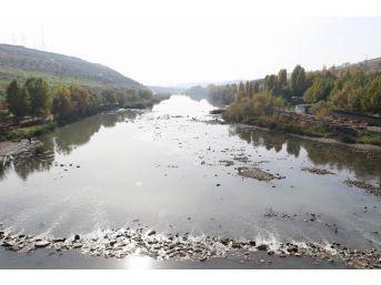 (özel) Dicle Nehri'ni Güzelleştirme Çalışmalarına Vatandaşlardan Destek