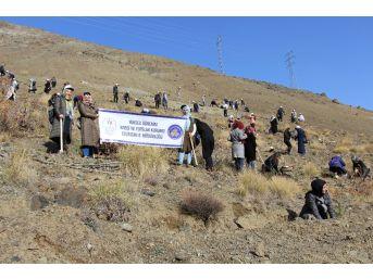Erzincan'da Her Kyk'lı Bir Fidan Dikti