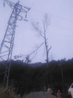 Budamak İçin Çıktığı Ağaçta Elektrik Akımına Kapıldı