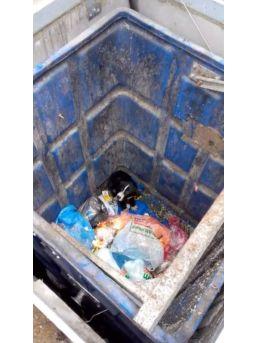 (özel Haber) Yiyecek Arayan Köpek Yer Altı Çöp Konteynerinin İçine Düştü