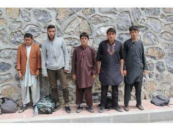 Başkale'de 5 Kaçak Şahıs Yakalandı