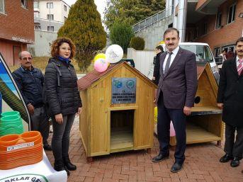 Burdur'da Sokak Hayvanlarına Kulübe