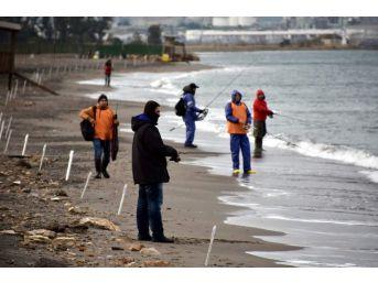 Balıkçılar Aliağa'da Yarıştı