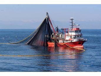 Balıkçılar Gürcistan Yolcusu