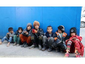 Van Büyükşehir Belediyesi, Dilendirilen Çocuklar İçin Harekete Geçti