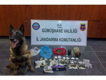 Gümüşhane'de Satışa Hazır Halde Uyuşturucu Ele Geçirildi