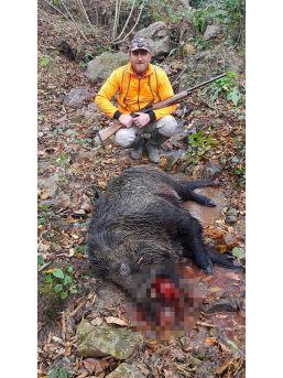 Avcılar Domuzlara Geçit Vermiyor