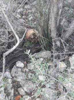 Mersin'de Çalılık Alanda Bir İnsana Ait Kemik Parçaları Bulundu