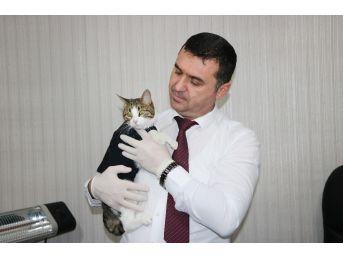 Başbakan Yıldırım'ın Gündemindeki Veteriner Hekim Konuştu