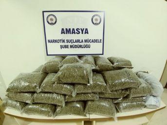 Amasya'da 21,8 Kilo Bonzai Ele Geçirildi
