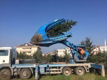 156 Çam Ağacı Cezaevi Bahçesine Naklediliyor