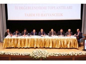 Başbakan Yardımcısı Bozdağ'dan Yozgat'a Süt Kurumu Müjdesi