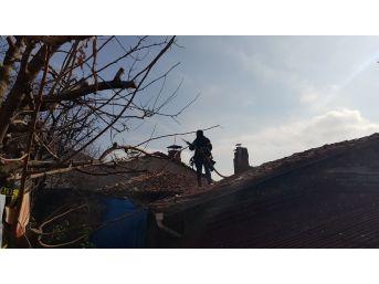 Tosya'da Yangın, Paniğe Neden Oldu