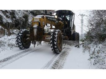 Kdz. Ereğli Belediyesi Karla Mücadele Çalışması Başlattı