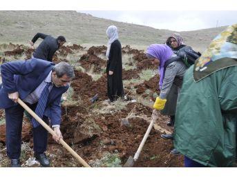 Yeşilay'dan Üniversite Kampüsünde Ağaçlandırma Etkinliği
