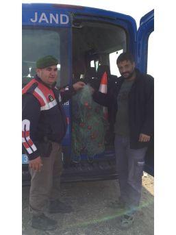 Tarsus'ta Yasa Dışı Balık Avlayan 2 Kişi Yakalandı